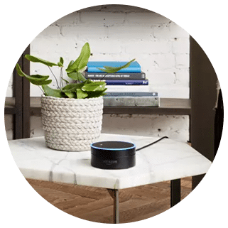 DISH Hands Free TV with Amazon Alexa - Alpine, Texas - Big Canyon Television - DISH Authorized Retailer